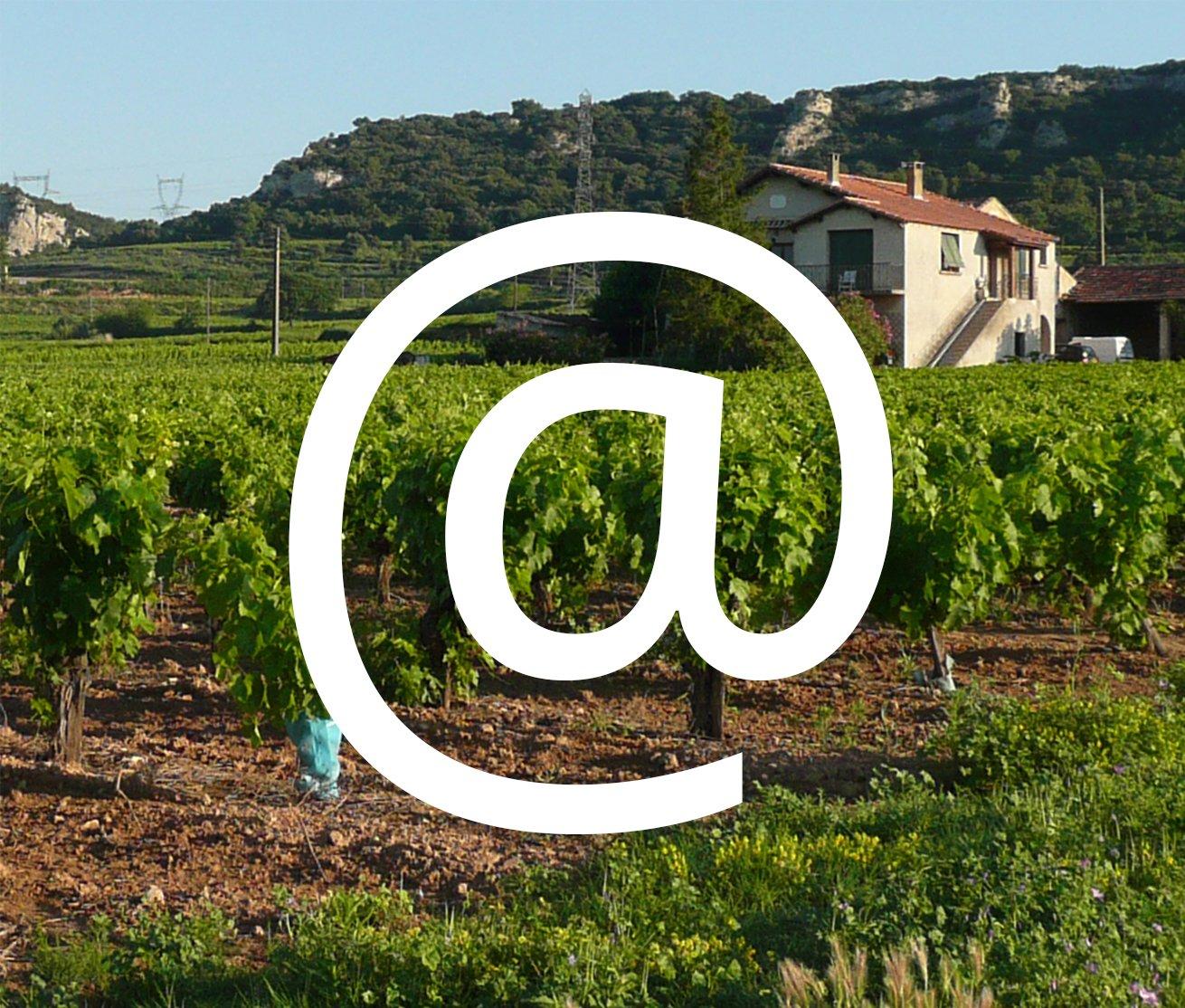 Agence web vin Beewine